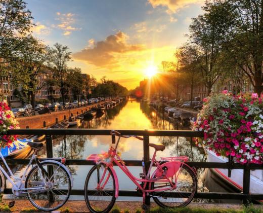 The ED Amsterdam afbeelding