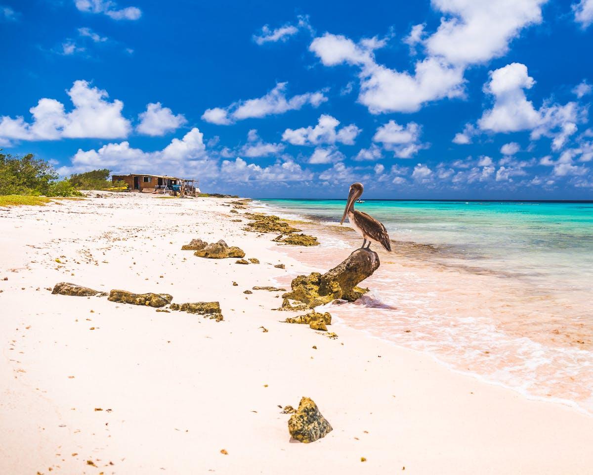 Vakantie op Bonaire afbeelding