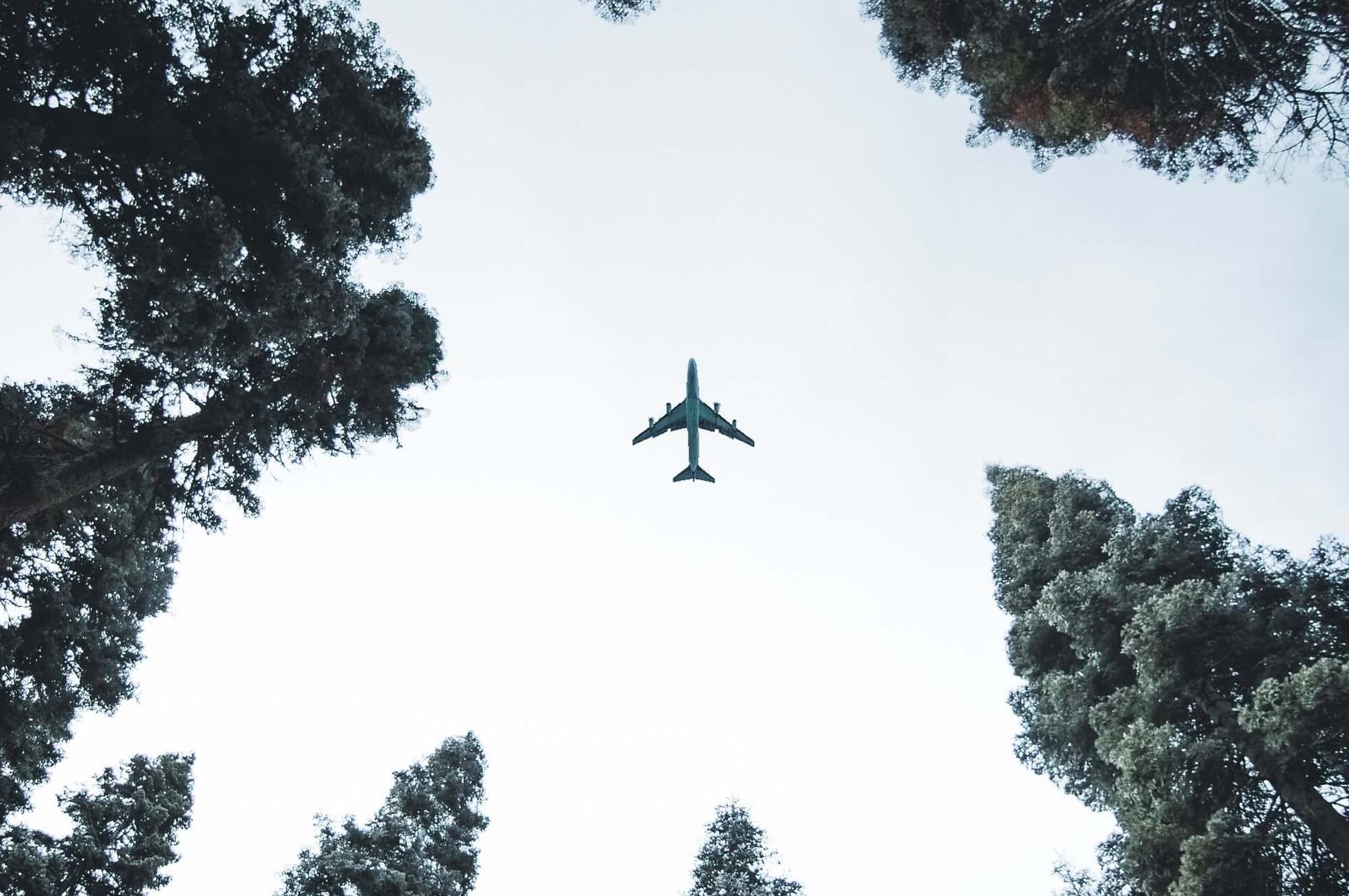 3 Redenen waarom CO2-gecompenseerd vliegen niet duurder is afbeelding