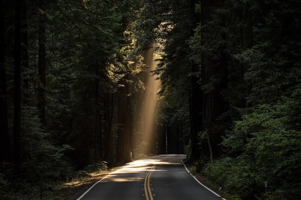 uploads/media/duurzaam_rijden_zuinig5dc91d440139b.jpg