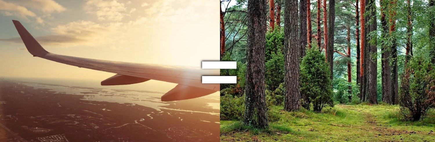Offsetting the carbon (CO2) emissions of your flight with e.g. trees